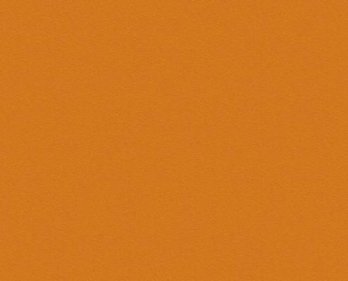 0132 Оранжевый