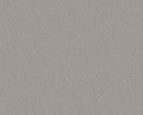 0197 Шиншилла Серая