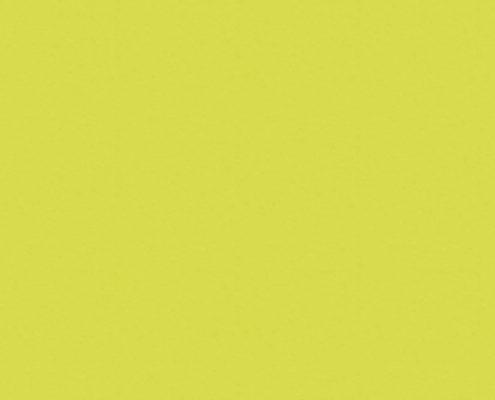 5519 Зеленый Лайм