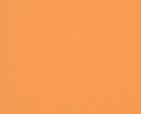 0021 Оранжевый