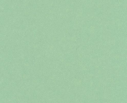 2570 Металлик салатовый