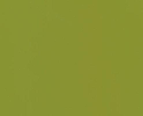 21 G Оливковый глянец