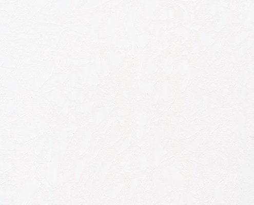 5031 Фрост белый